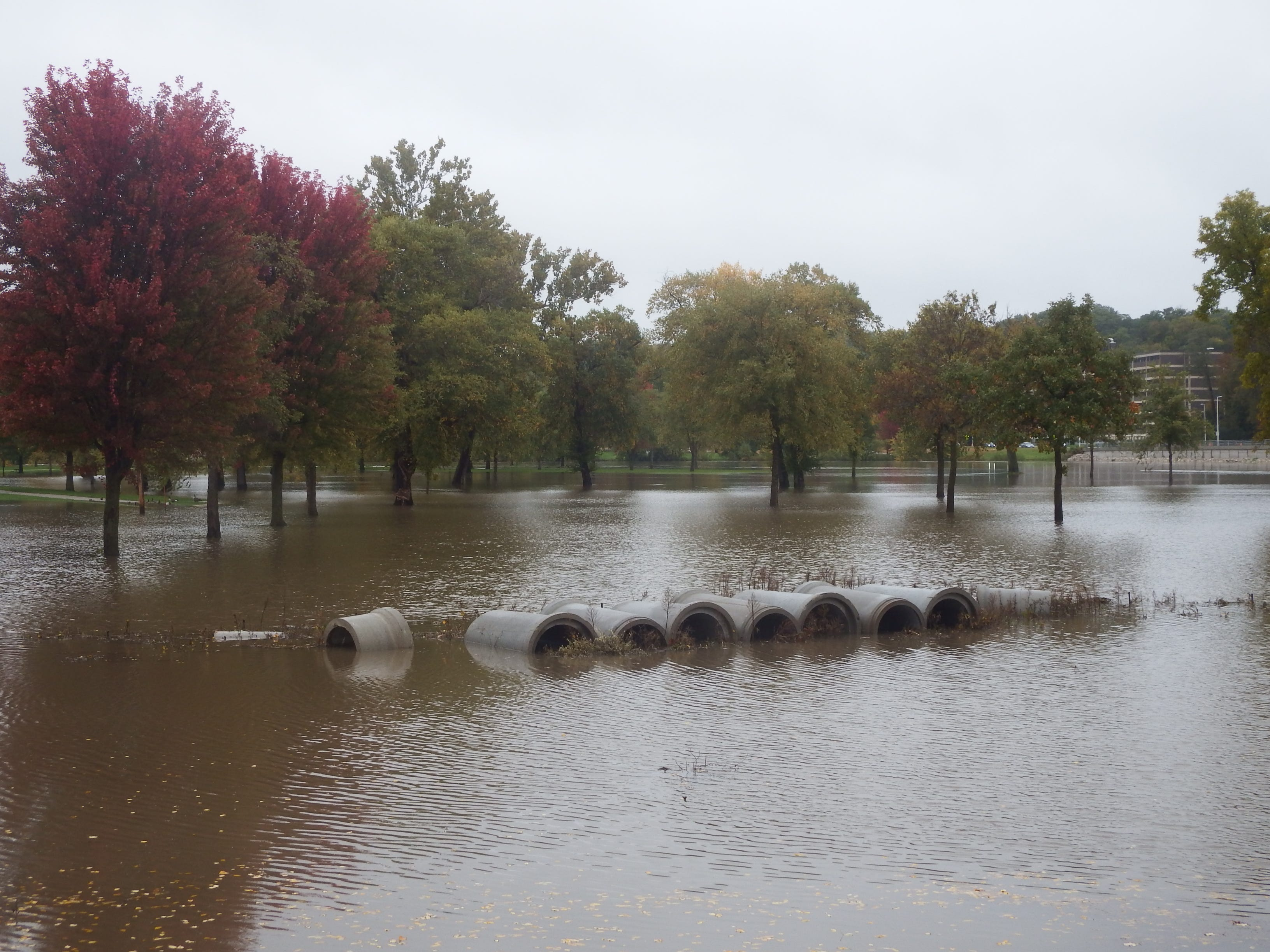 Construction materials inundated by Iowa River flood waters.