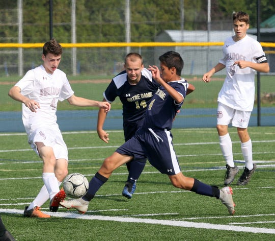 David Bentancourt-Trompa (4) of Elmira Notre Dame slides in to make a play on Delhi's Dan Rolfe (4) during a boys soccer game Oct. 8, 2018 at Brewer Memorial Stadium.