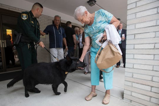 A visitor pets JoJo, the newest Lee County Sheriff's Office K-9 officer, who was introduced to the public Monday in a dedication ceremony held in Fort Myers at Covenant Presbyterian Church.