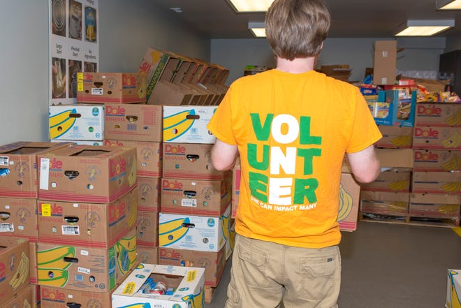 A volunteer organizes food donations at Food Finders