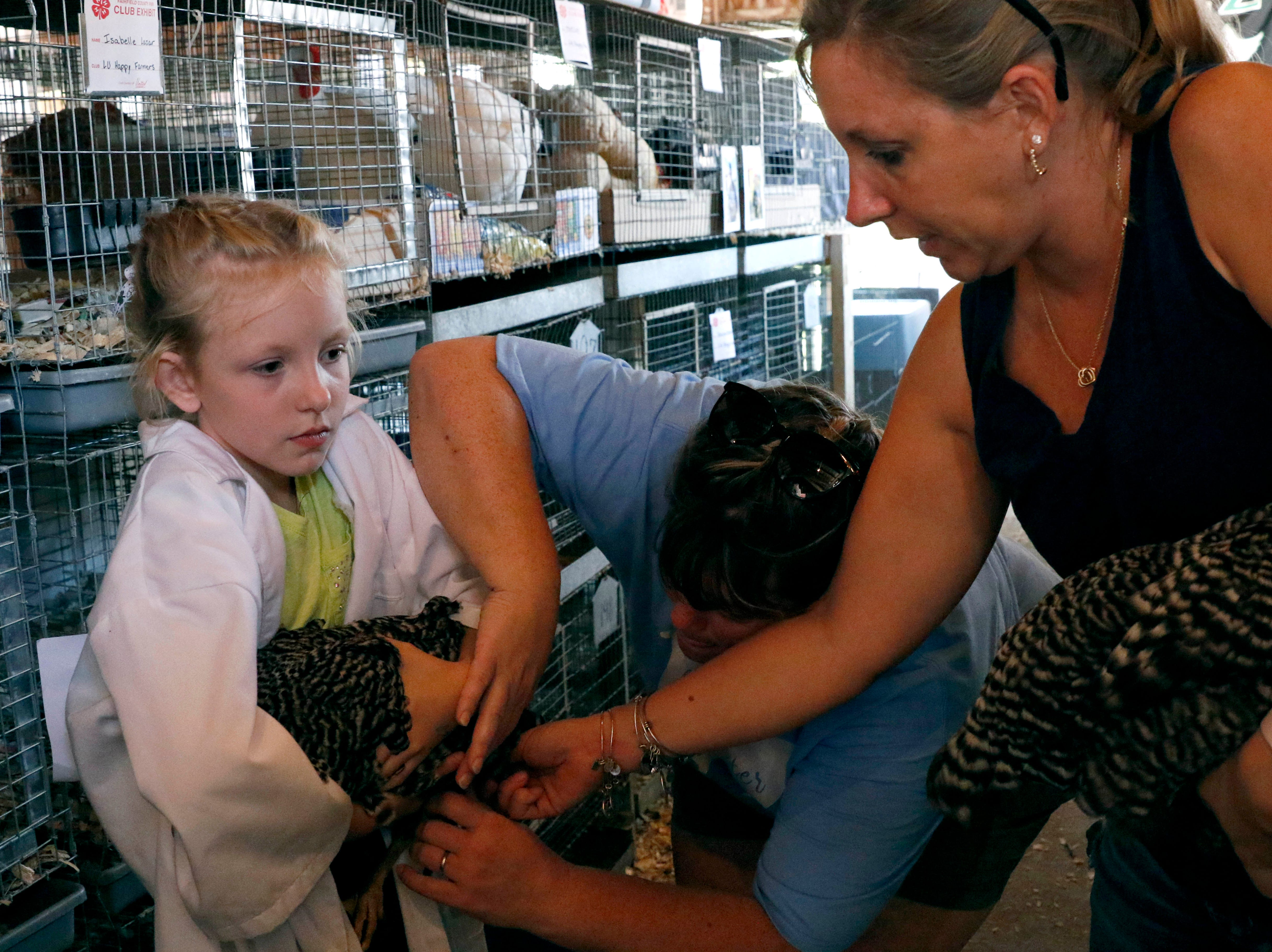 L.U. Happy Farmer's 4-H Club adviser Betsy Loy and Emily Lazar help Keira Lazar, 9, hold a chicken before her showmanship competition Monday, Oct. 8, 2018, at the Fairfield County Fair in Lancaster. Members of LU Happy Farmer's and other clubs are collecting eggs laid by chickens during fair week to Foundation Dinners in Lancaster.