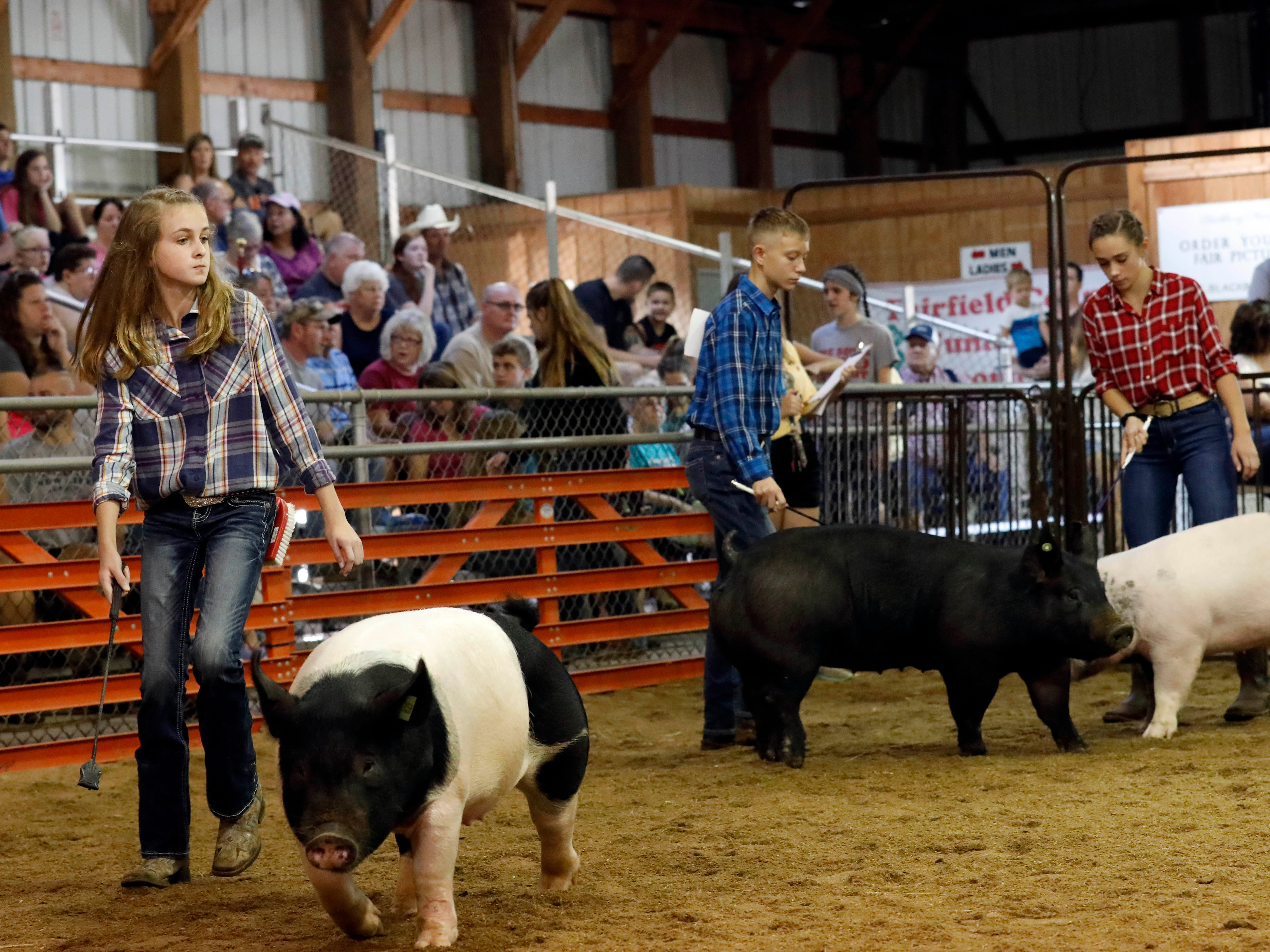 The Junior Fair Swine show was Monday, Oct. 8, 2018, at Fairfield County Fair in Lancaster.