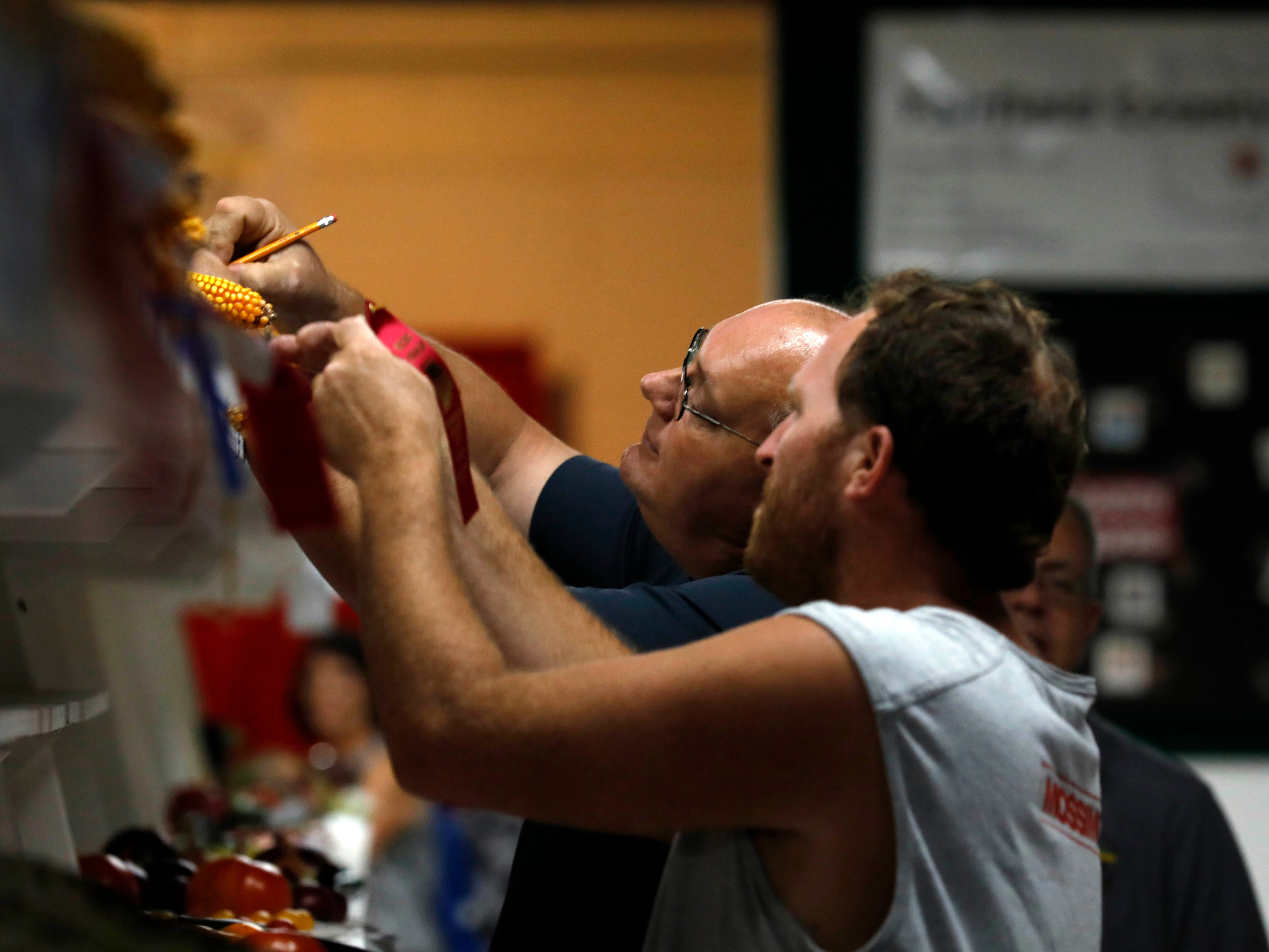 A judge looks at ears of corn Monday morning, Oct. 8, 2018, in the Art Hall at the Fairfield County Fair in Lancaster.