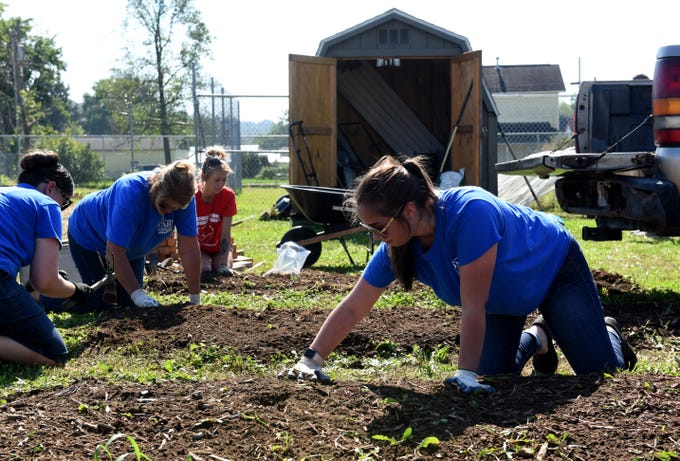 Park National Bank employee Macy Medina (right) plants garlic with coworkers Tabitha Hancock and Stephanie Hardin and Together We Grow Garden's Sarah Thomas at the garden on East Main Street in Newark. Bank employees volunteered at the garden to prepare it for winter as part of the company's PNB Cares initiative on Monday, Oct. 8, 2018. Employees worked on over 70 projects for organizations in Central Ohio communities. Local projects also included landscaping at the Weathervane Playhouse, organizing books for the Licking County Library, and painting for the Licking County Coalition for Housing.