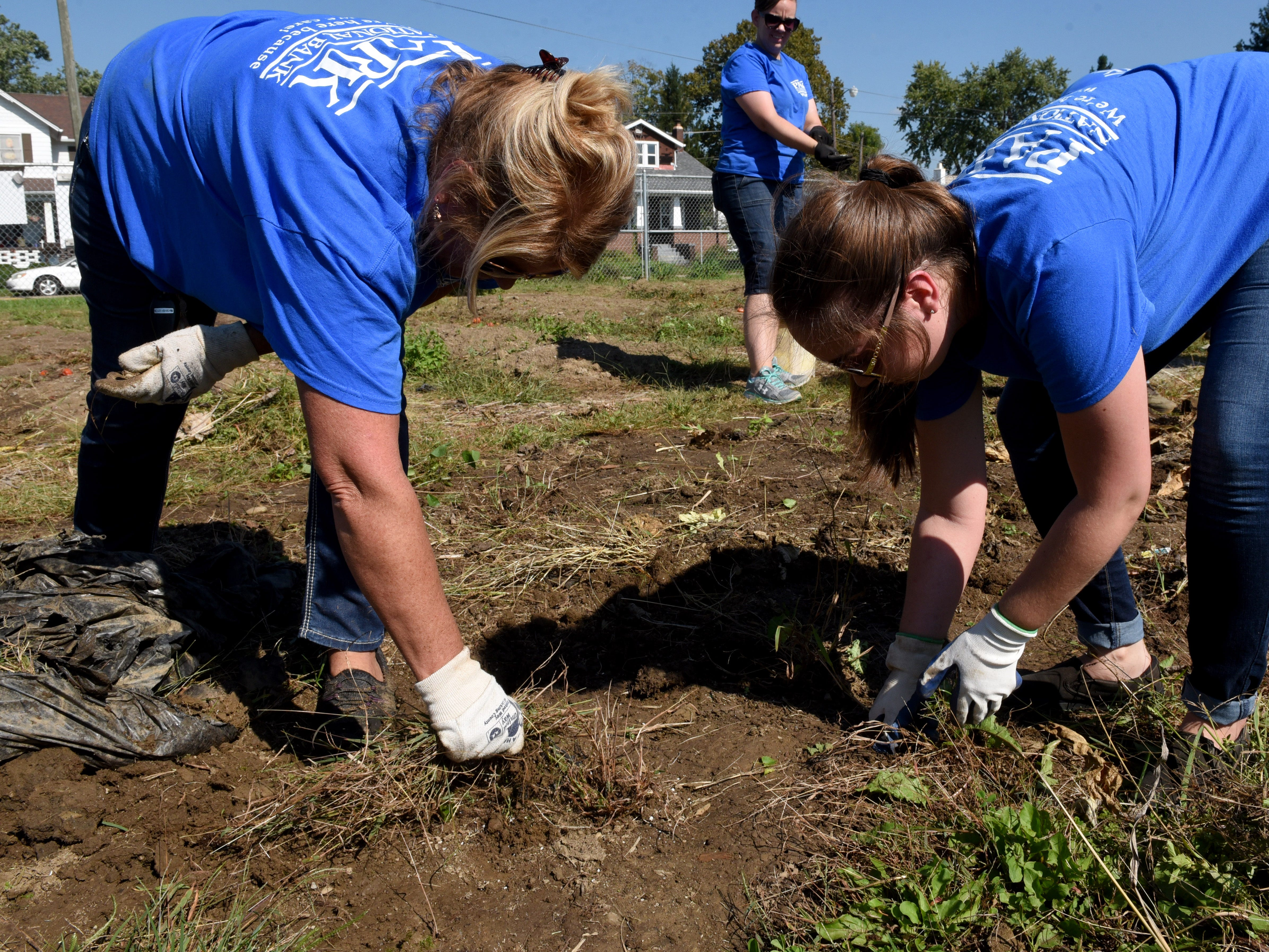 Park National Bank employees Stephanie Hardin and Macy Medina pull weeds at the Together We Grow Garden on East Main Street in Newark. Bank employees volunteered at the garden to prepare it for winter as part of the company's PNB Cares initiative on Monday, Oct. 8, 2018. Employees worked on over 70 projects for organizations in Central Ohio communities. Local projects also included landscaping at the Weathervane Playhouse, organizing books for the Licking County Library, and painting for the Licking County Coalition for Housing.