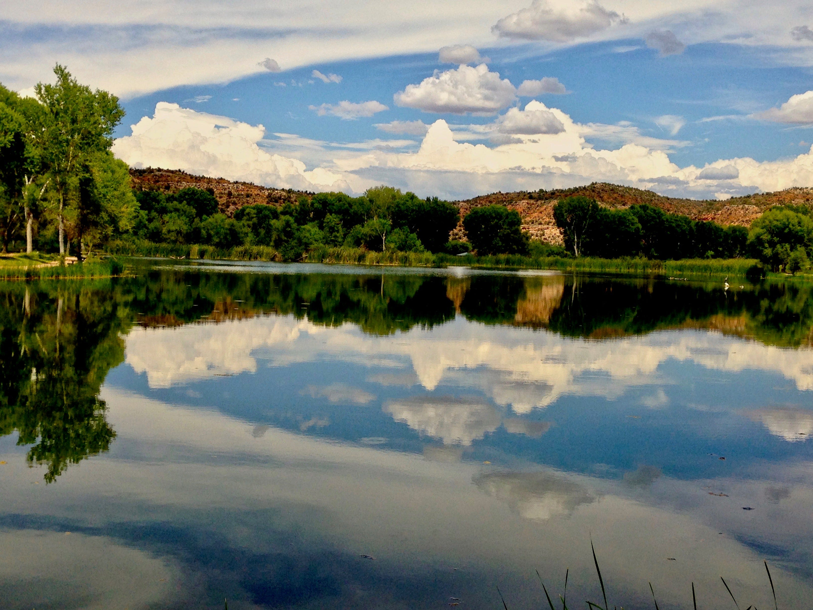 Dead Horse Ranch State Park in Cottonwood protects a stretch of Verde River, a handful of lagoons and a network of hiking and biking trails.