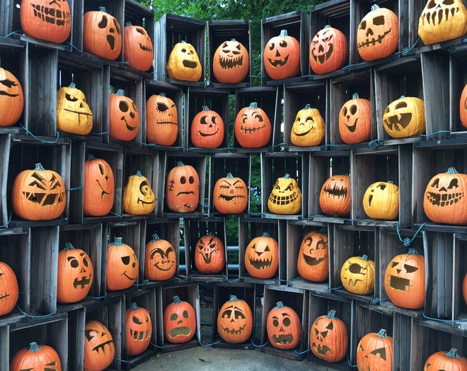"""In lieu of HalloWeekends, this year Cedar Point is hosting  """"Tricks and Treats Fall Fest."""""""