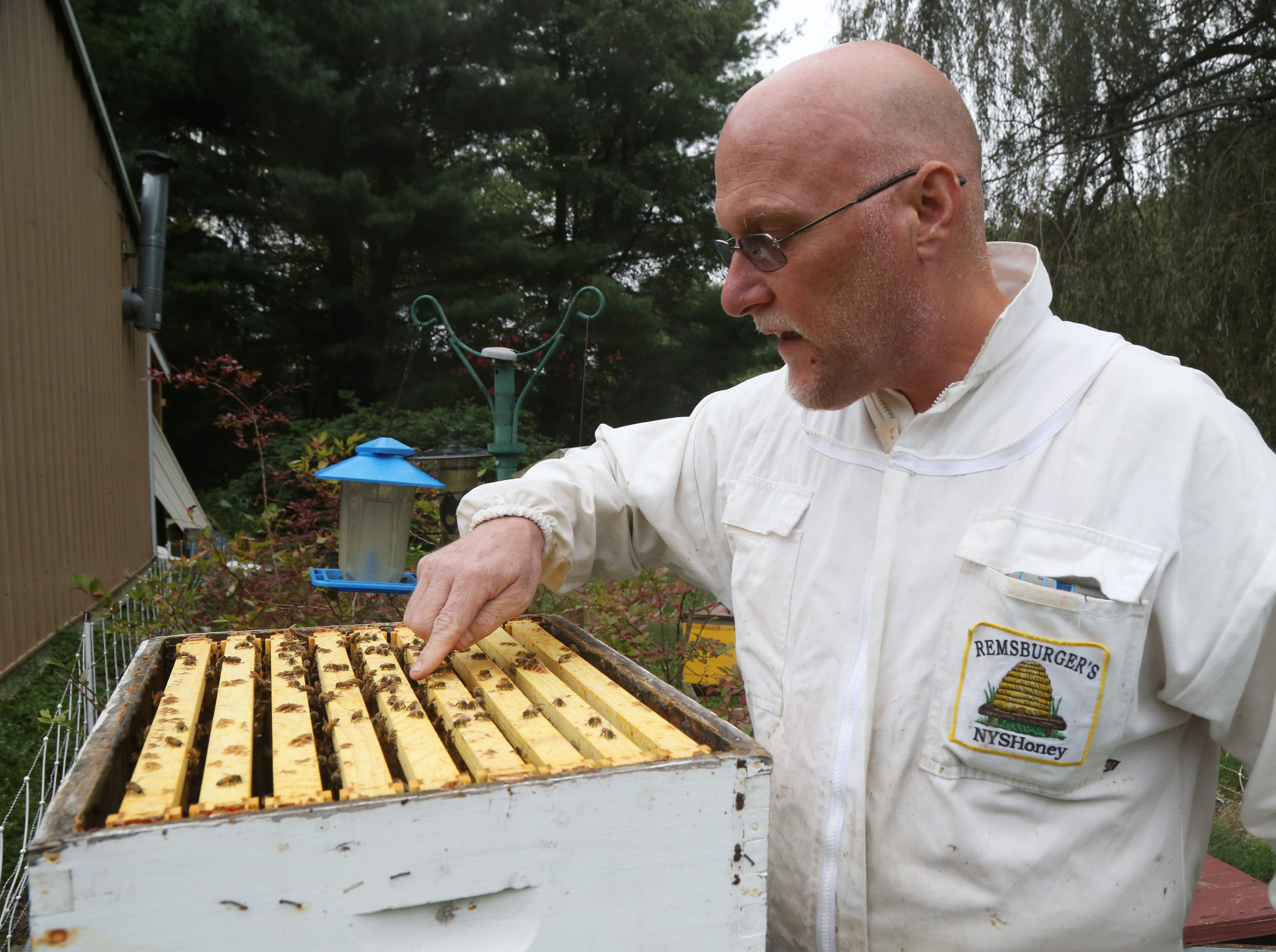 Dennis Remsburger looks over a beehive at his home in Pleasant Valley on October 8, 2018.