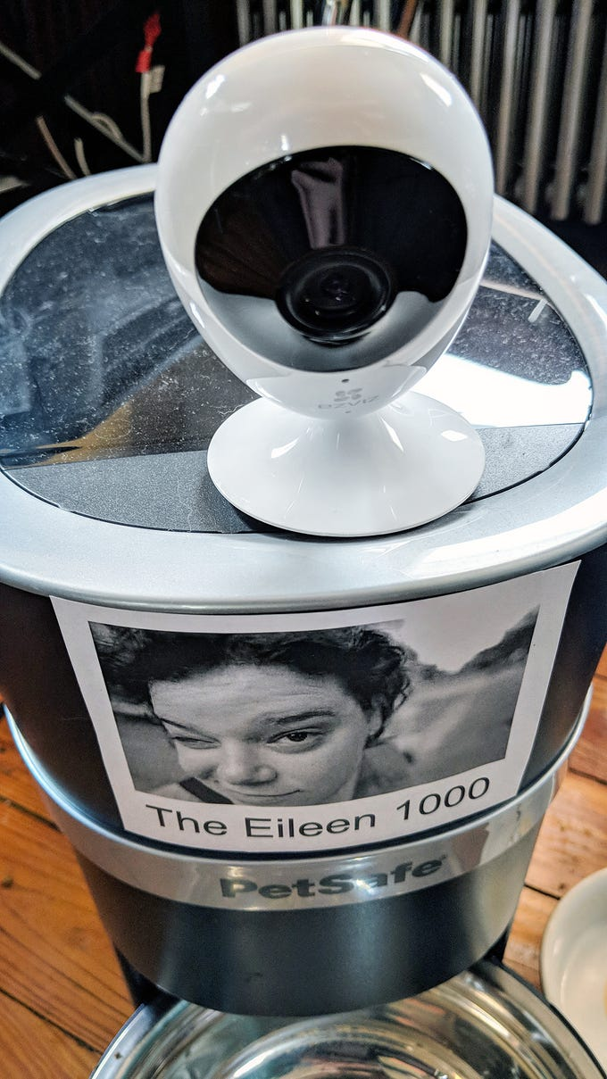 The PetSafe Smart Feed Automatic Dog and Cat feeder is also known as the Eileen 1000, named after my departed human feeder. On top of the feeder is the EZVIZ Mini O 1080p WiFi Cloud camera that records my cat eating.