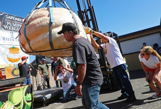Judges inspect the first place pumpkin in the 45th annual Safeway World Championship Pumpkin Weigh-Off on Monday, Oct. 8, 2018, in Half Moon Bay, Calif. Steve Daletas, a commercial pilot from Oregon raised a giant pumpkin weighing 2,170 pounds to win a pumpkin-weighing contest in Northern California.
