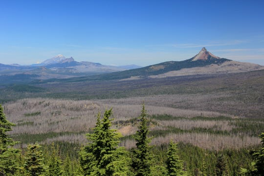 Views of previous wildfires in the Mount Washington and Mount Jefferson area, from the top of Scott Mountain.