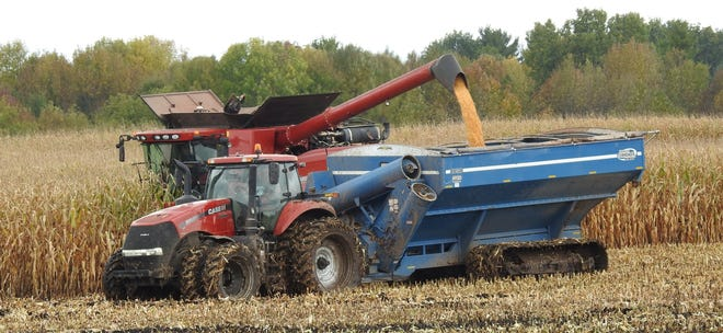 This Manitowoc County producers takes advantage of a break in the weather to combine high moisture corn.