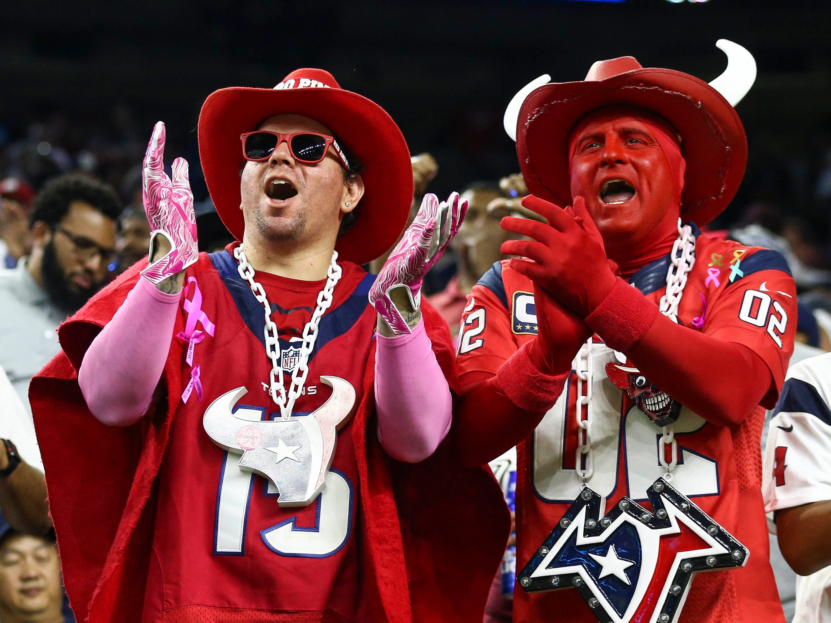 Fans cheer during the game between the Houston Texans and the Dallas Cowboys at NRG Stadium.