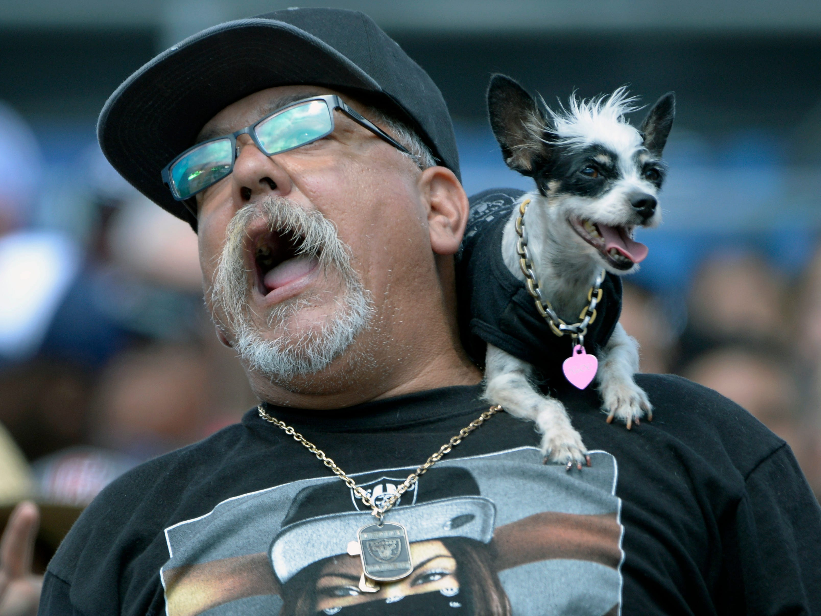 An Oakland Raiders fan cheers during the first quarter against the Los Angeles Chargers at StubHub Center.