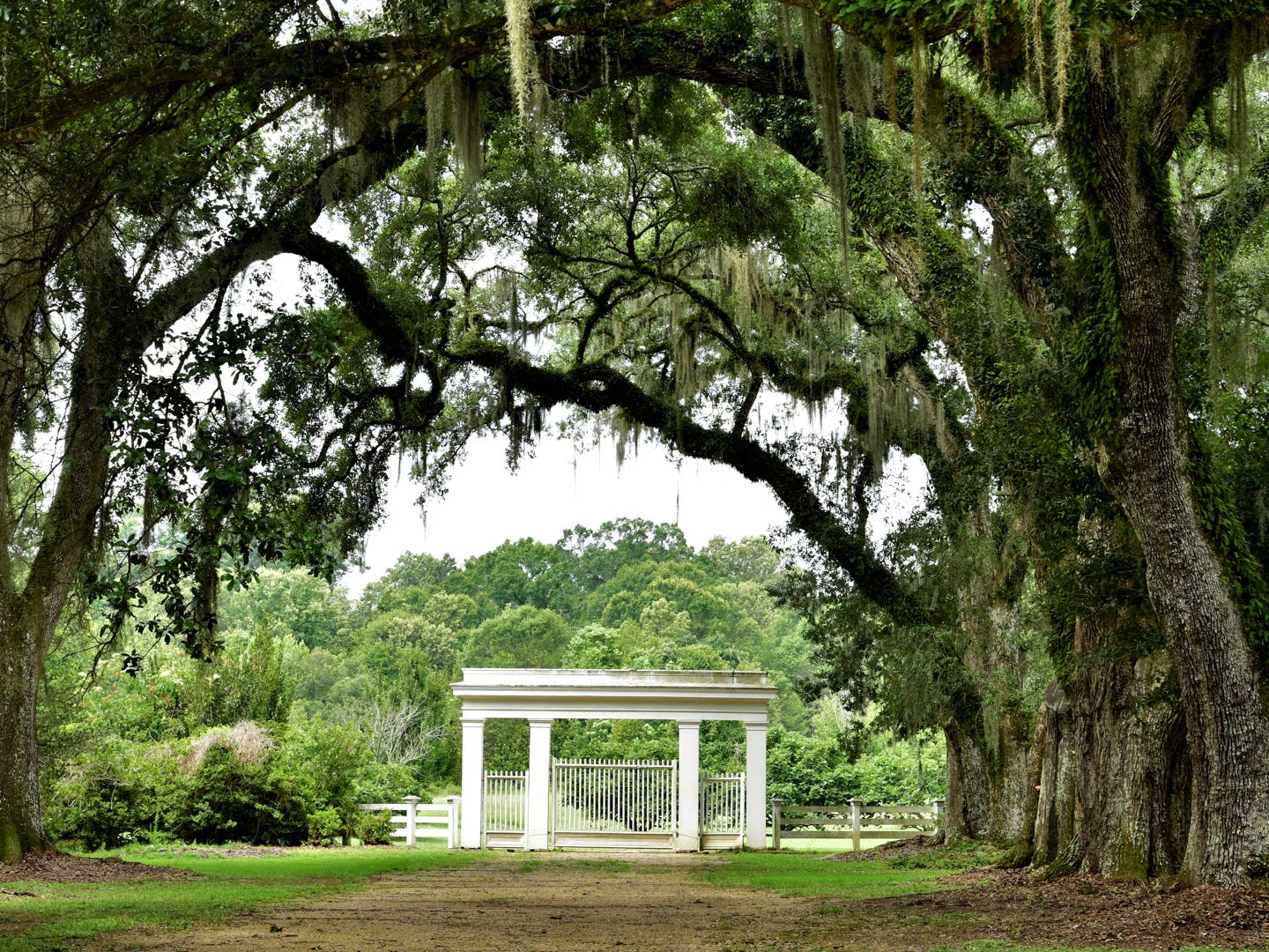 Louisiana: If relaxing on a porch among trees hung with Spanish moss is your idea of an ideal Southern escape, you're going to want to head to St. Francisville. The small town is so picturesque, it's been the backdrop for numerous TV shows and films. Spend your days browsing antique shops, visiting historic plantations or golfing at The Bluffs on Thompson Creek, the only Arnold Palmer-designed course in the state. Fans of ghosts and the supernatural can't miss a stop at The Myrtles Plantation, which is said to be haunted. St. Francisville is definitely one of America's most underrated travel spots. Evening Mystery Tour at The Myrtles Plantation: $15.