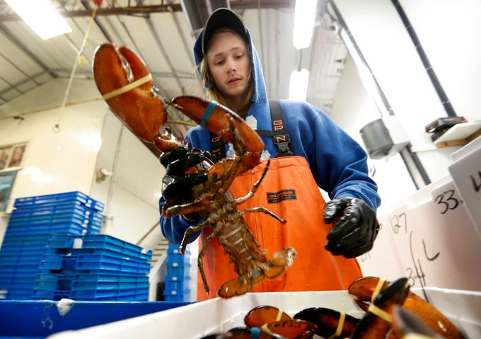 Owners of the Lobster Co. in Maine say China's 25% import tax will cost them about $10 million in 2018 sales.