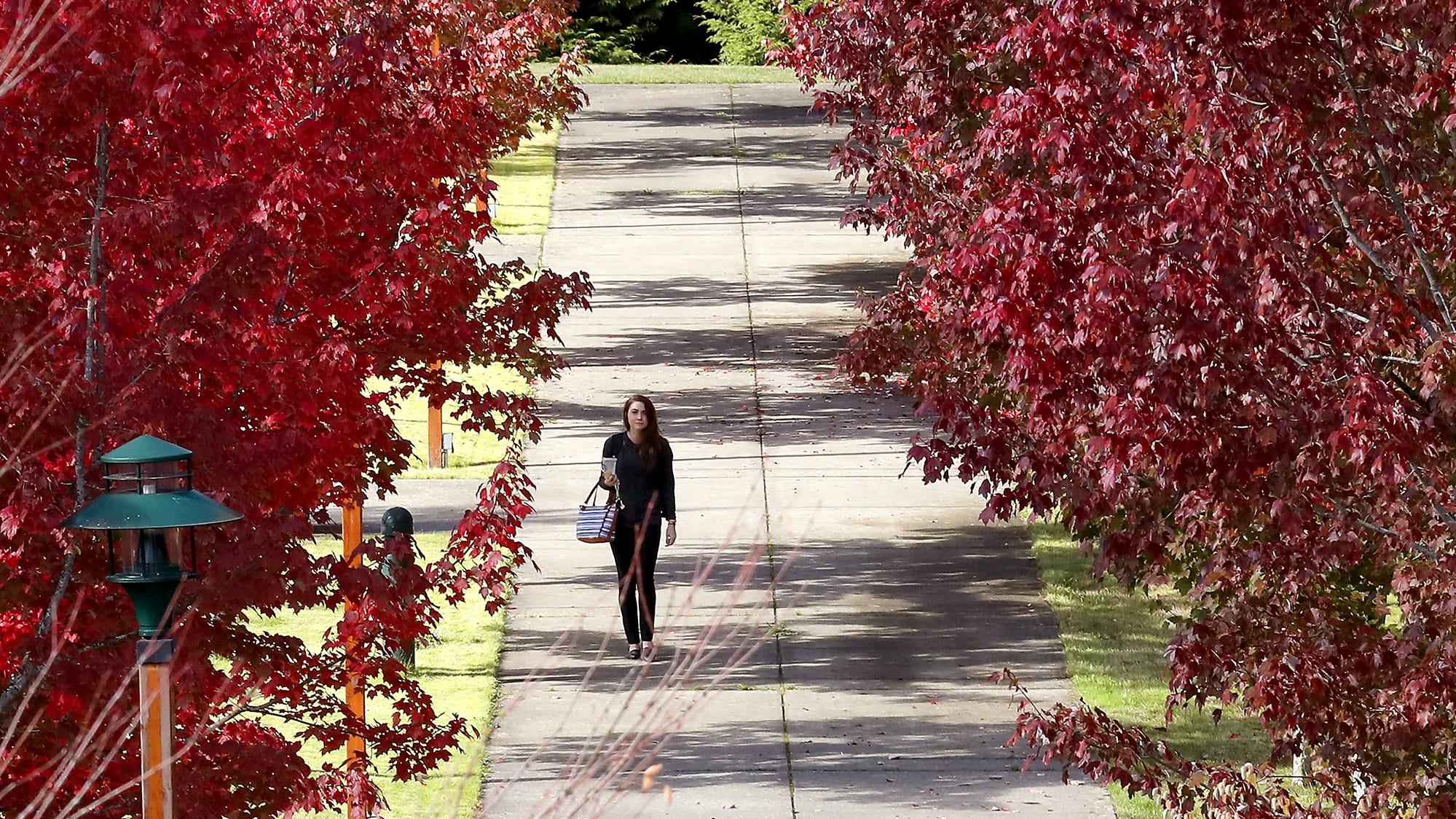Student Sara Simmons heads down the tree-lined path at the Olympic College campus in Poulsbo on Tuesday, October 9, 2018. Simmons is the Student Government of Olympic College Vice President of Poulsbo.