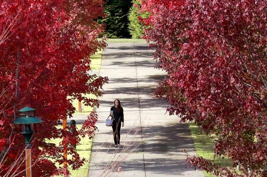 Standalone Fall Student Walk