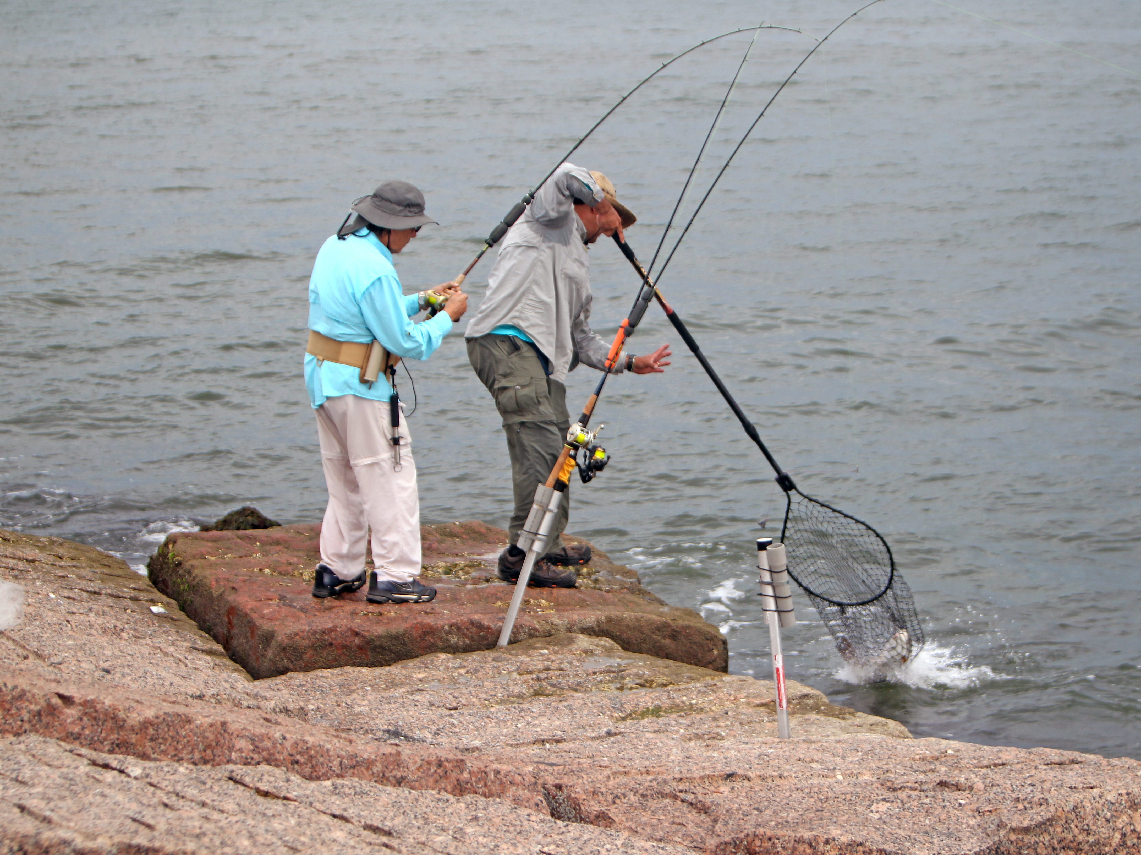 A long-handled net is essential if you want to land more fish from the rocks.