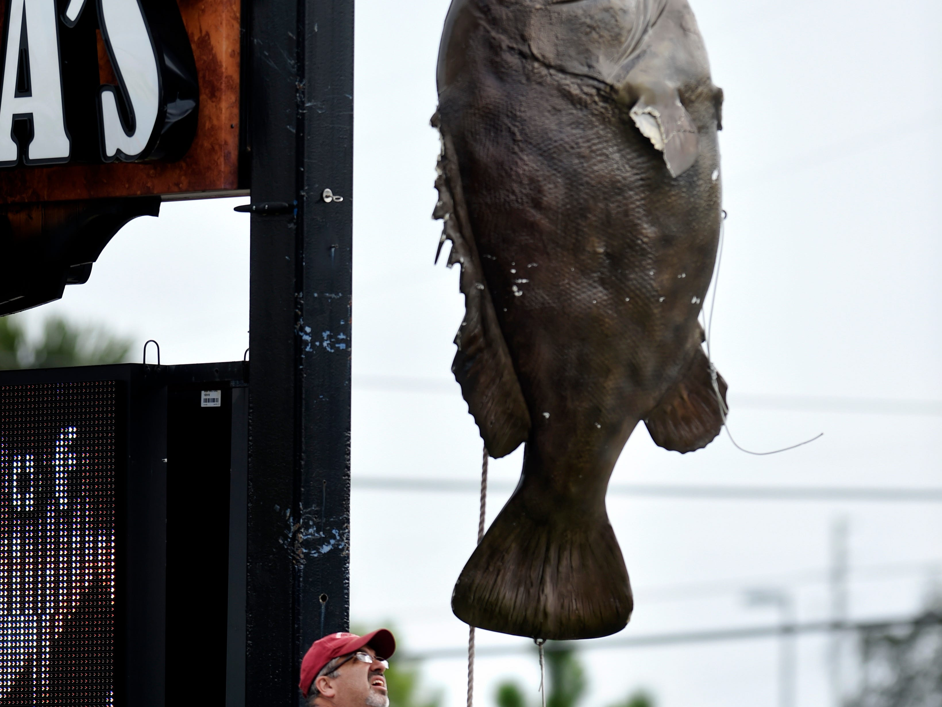 Tracy McCraw takes down a giant fiberglass Warsaw Grouper from a restaurant sign in Destin, Fla. Residents and business owners of this Florida panhandle resort town were busy making preparations Tuesday before the expected landfall of Hurricane Michael on Wednesday.
