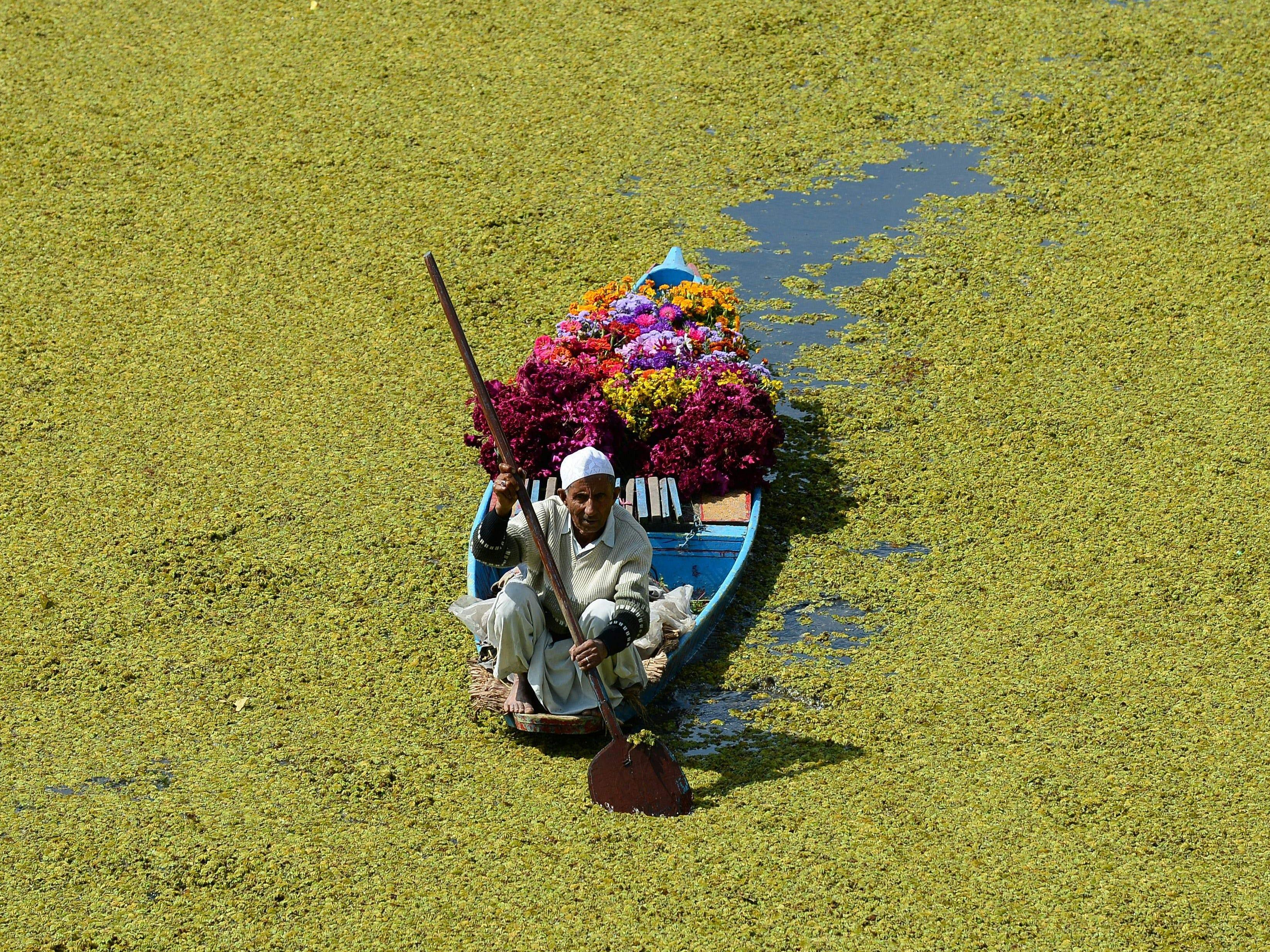A Kashmiri flower vendor paddles his boat along Dal Lake in Srinagar on October 9, 2018.