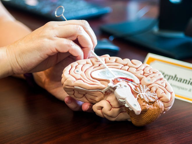 Stephanie TerMaath, lead researcher and an assistant professor of mechanical, aerospace, and biomedical engineering at the University of Tennessee, describes a brain shunt treatment she and a team of researchers at UT are developing on Tuesday, October 9, 2018.