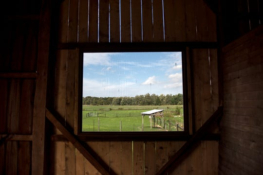 A view out of a large window in the barn at the Willowicke Inn Bed and Breakfast on Wednesday, Oct. 3, 2018, in Williamston.