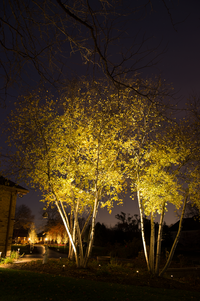 Spotlights accent trees, and small path lights guide homeowners down a driveway.