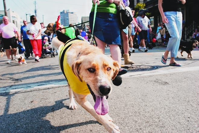 Brady Street welcomes pets and the people who love them for the Brady Street Pet Parade Sunday.