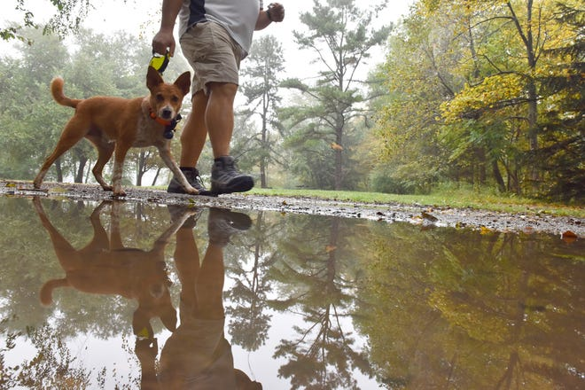 Michael Leibman, of Mahwah, walks with his dog Pinto around Scarlet Oak Pond at Ramapo Valley County Reservation Park in Mahwah Tuesday on October 9, 2018.
