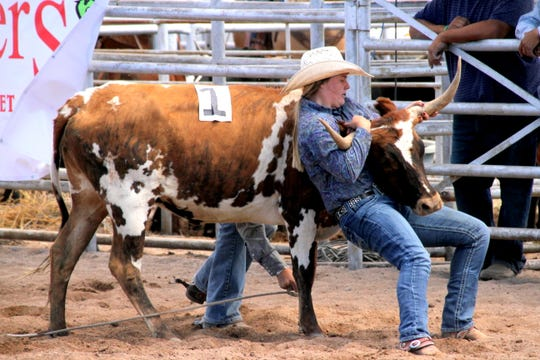 Megan Miller of the 3 Bar Ranch team has her hands full during a roping competition.