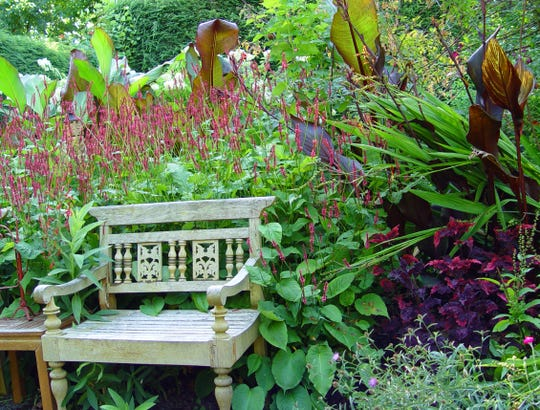 Bold colors cut through the fog of dementia to help them your loved one feel festive in the garden.