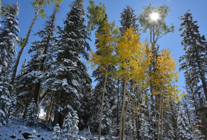 Snowy scene from Arizona Snowbowl on Oct. 9, 2018.