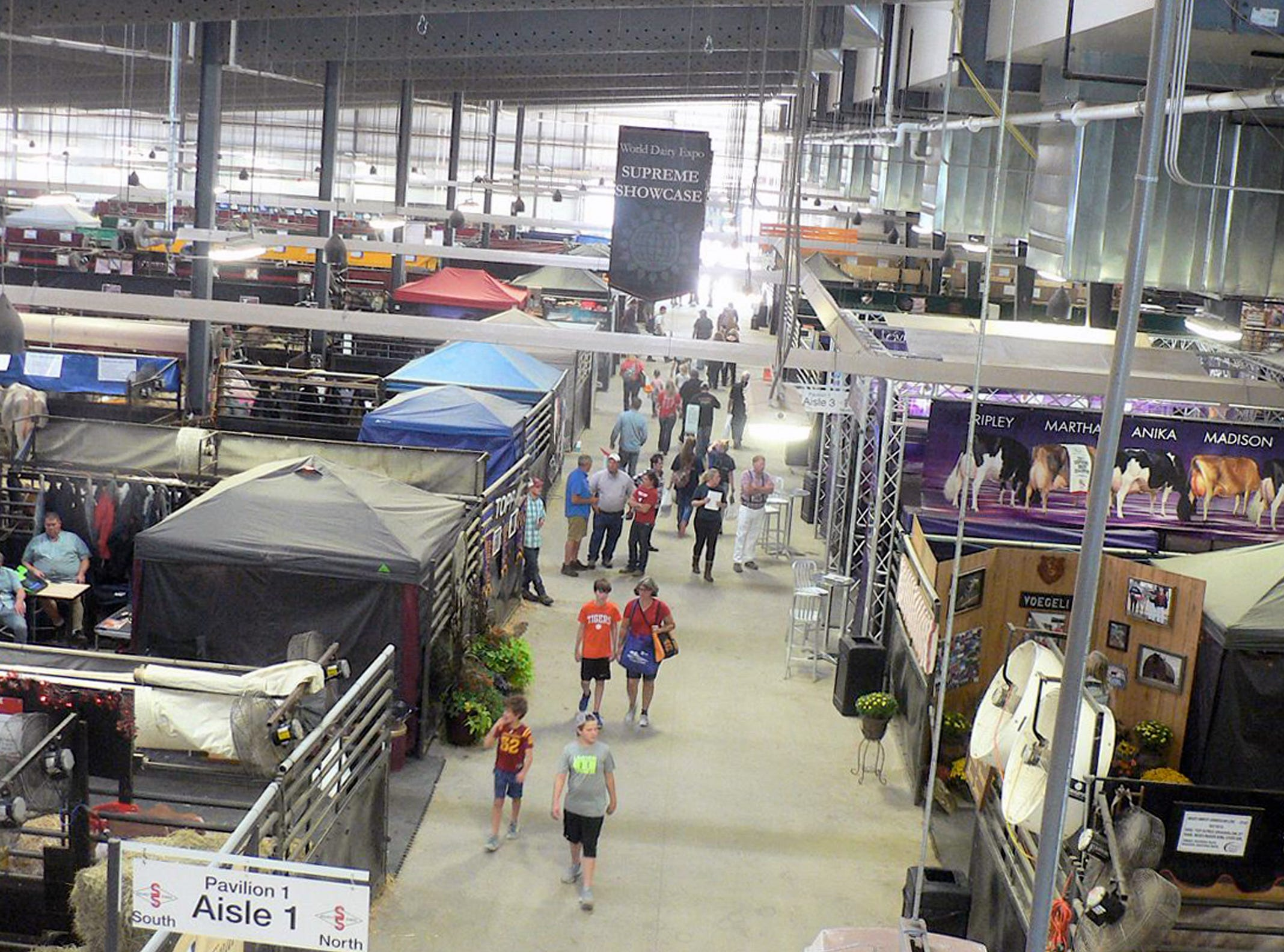 The New Holland Pavilion from above.  In addition to the cattle, note the tents used for animal and human supplies.