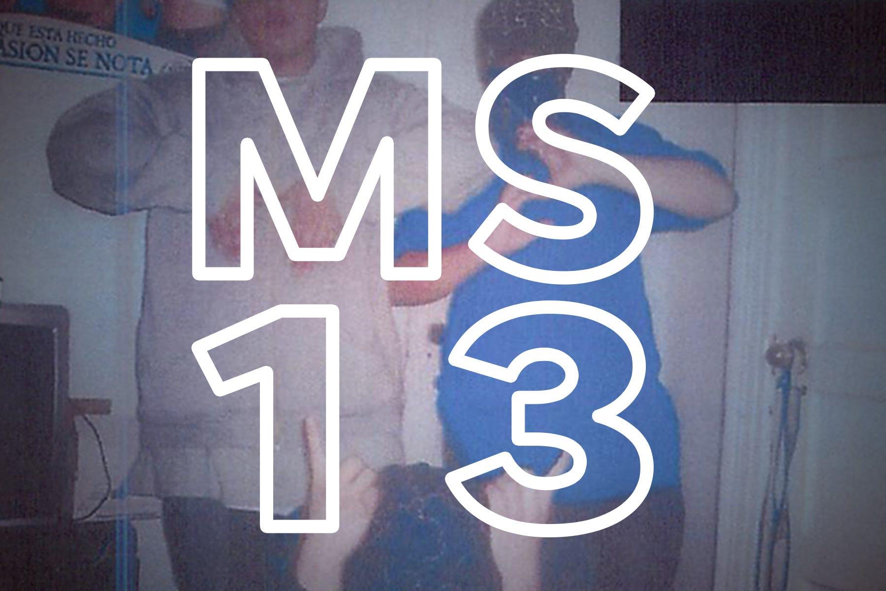 Ms 13 Promo Image