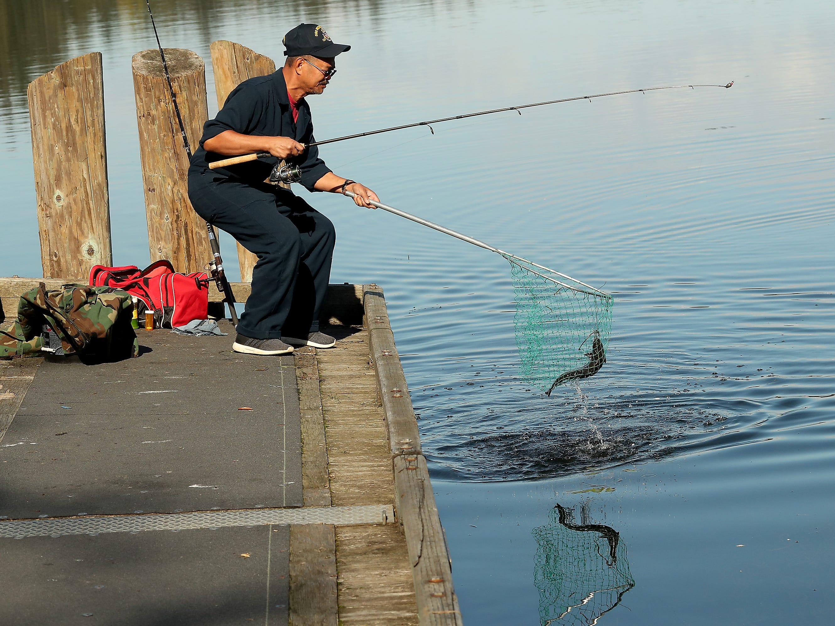 Alejo Dominguez scoops up a rainbow trout in his net while fishing from the dock at Kitsap Lake Park in Bremerton on Wednesday, October 10, 2018.