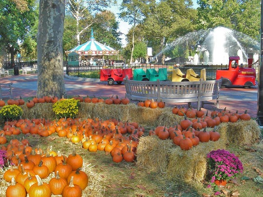 The opportunity to pick and decorate a pumpkin from the pumpkin patch is one of many events going on at Franklin  Square this fall.