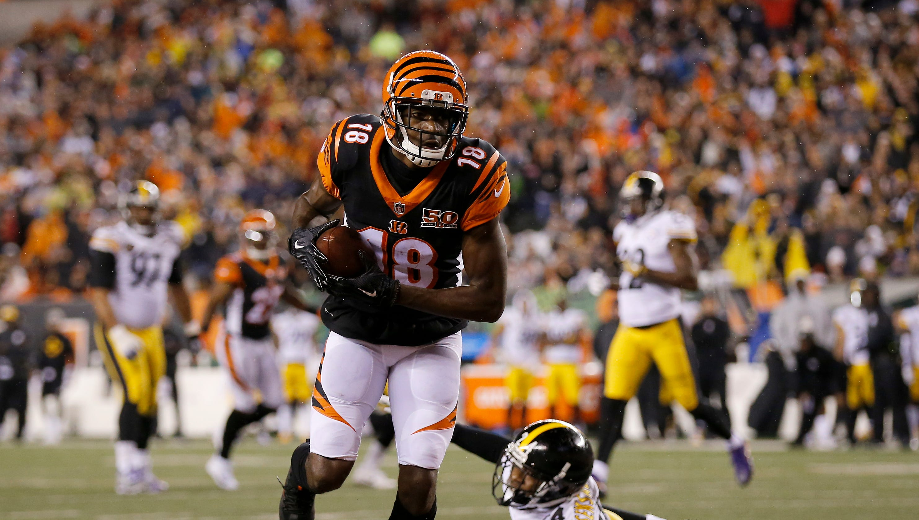 Image result for bengals steelers