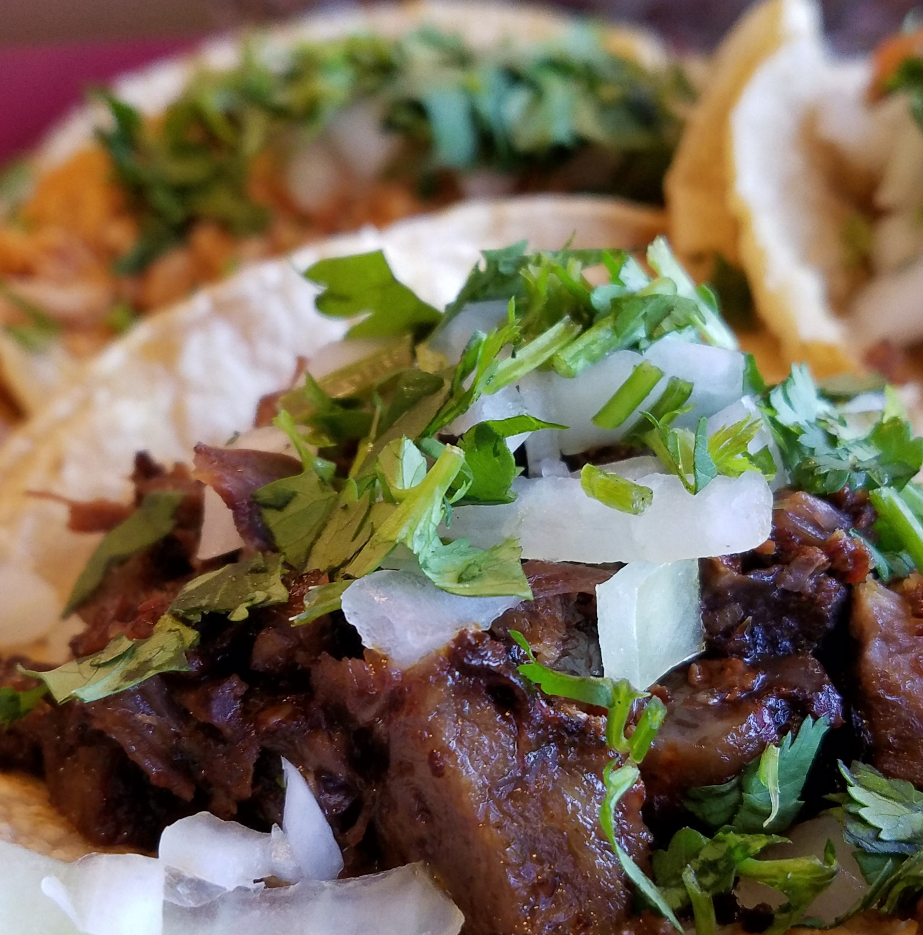 Evansville Taco Festival at Old National Events Plaza Saturday