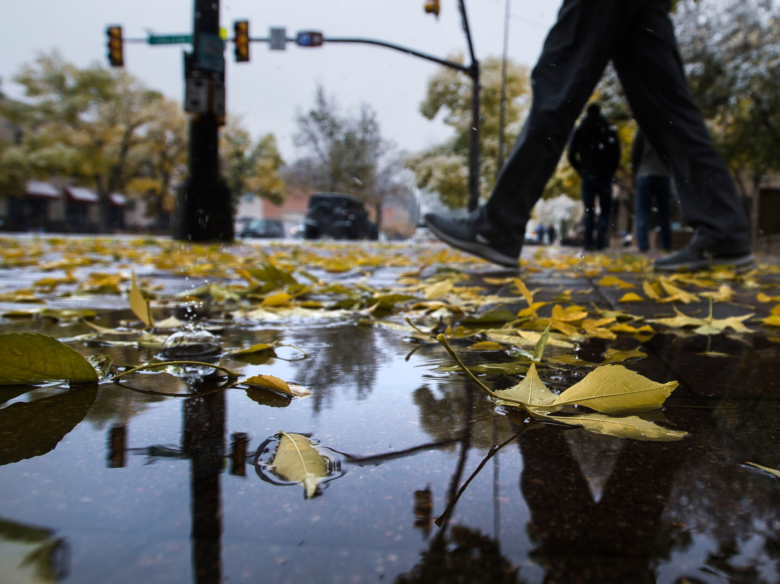 Newly fallen leaves litter the College Avenue sidewalk on Wednesday, Oct. 10, 2018, in Fort Collins, Colo.