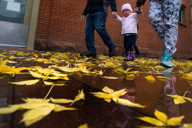 Emma Barden, 2, holds hand with her grandparents, Laurie and Fred Barden, as newly fallen leaves litter the College Avenue sidewalk on Wednesday, Oct. 10, 2018, in Fort Collins, Colo. Today is Emma's second birthday.