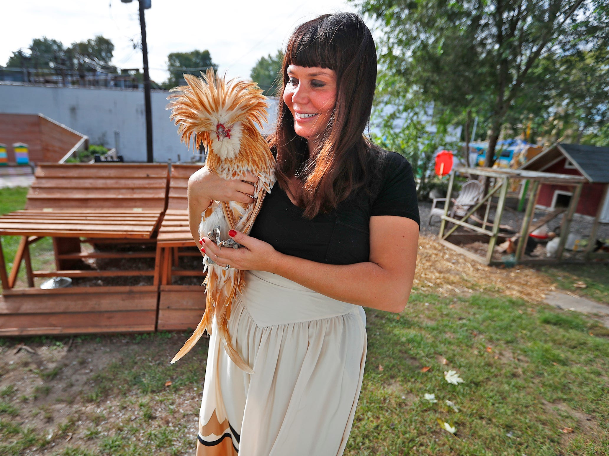 Shauta Marsh holds a Silkie, Tuesday, Oct. 9, 2018, at the site where the new Chicken Chapel of Love will be built.  The Vegas-style wedding chapel in the backyard of the Tube Factory Artspace will be complete with chickens.  You can bring your own minister or ask one of the ordained Big Car staff to officiate.  The chapel also will be a meditation center that connect the art world to the earth.  Also on the site are a bee sanctuary, raised gardens, and chicken coops.