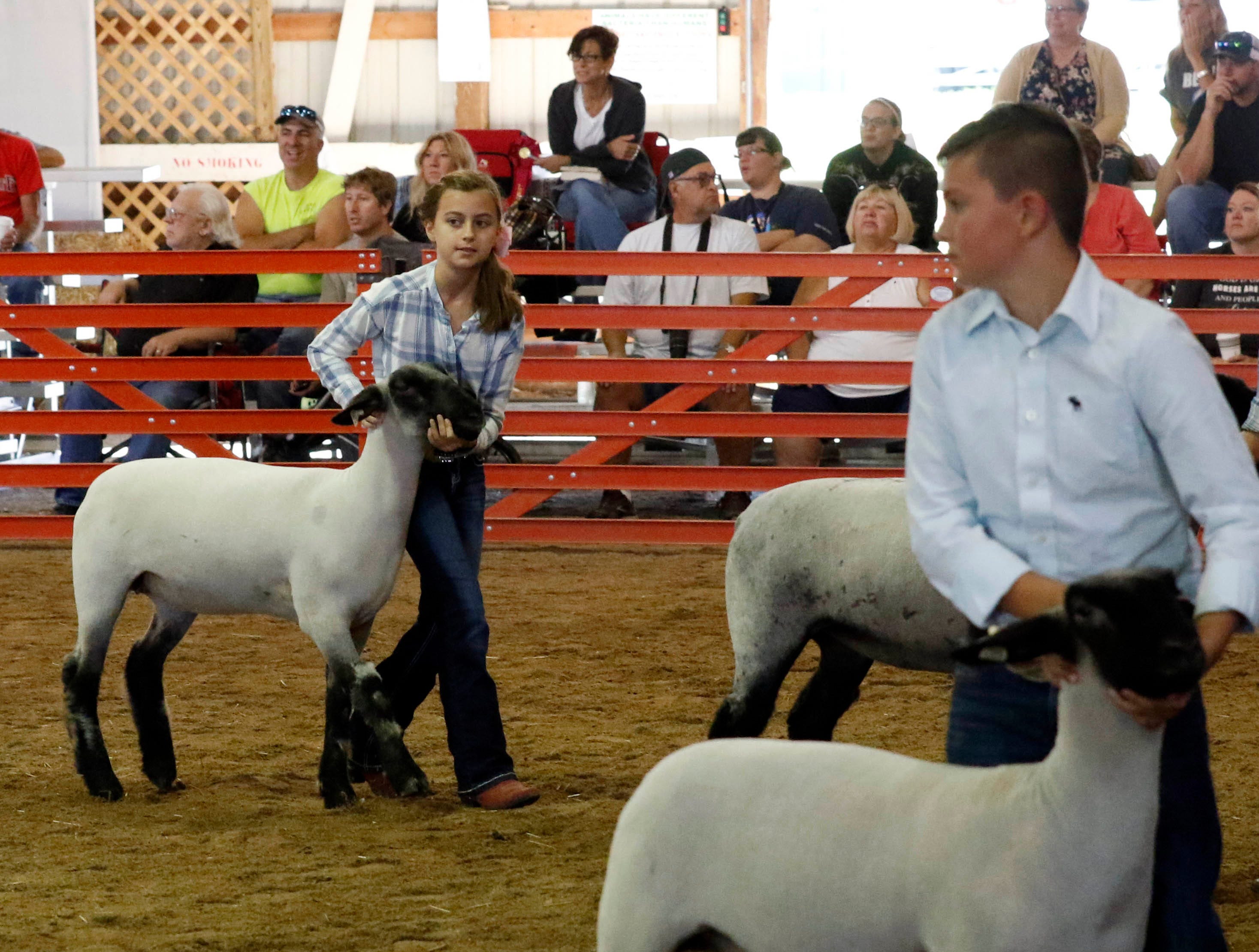 The junior fair sheep show was held Wednesday, Oct. 11, 2018, at the Fairfield County Fair in Lancaster.