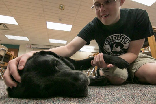 Liam Kennedy, student at Brighton High School, says hello to therapy dog Caesar Wednesday, Oct. 10, 2018 before moving on to Kennedy's next class.