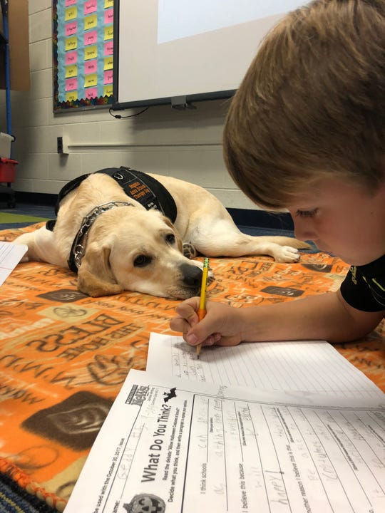Geddy Folse, a Hawkins Elementary third grader, does school work alongside Scout, a Brighton Schools therapy dog. The district plans to have a dog in every building by next spring.