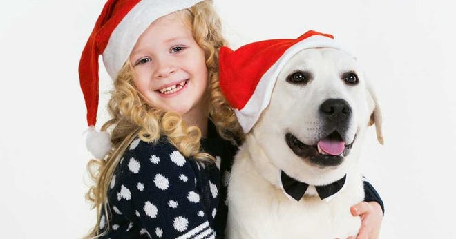 After the success of Brookfield Square pet nights, where pets can take pictures with Santa, the mall will be holding its first pet expo.