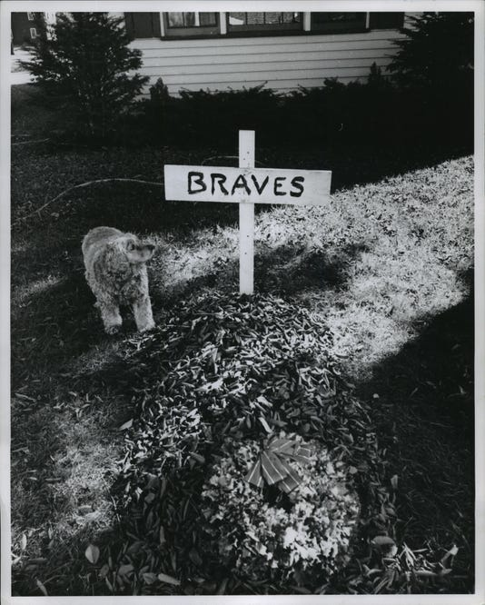 1959 Press Photo Dog At Grave For Milwaukee Braves Baseball Team After Loss