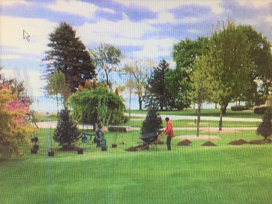 Fox Point neighbors in court over trees, views and property