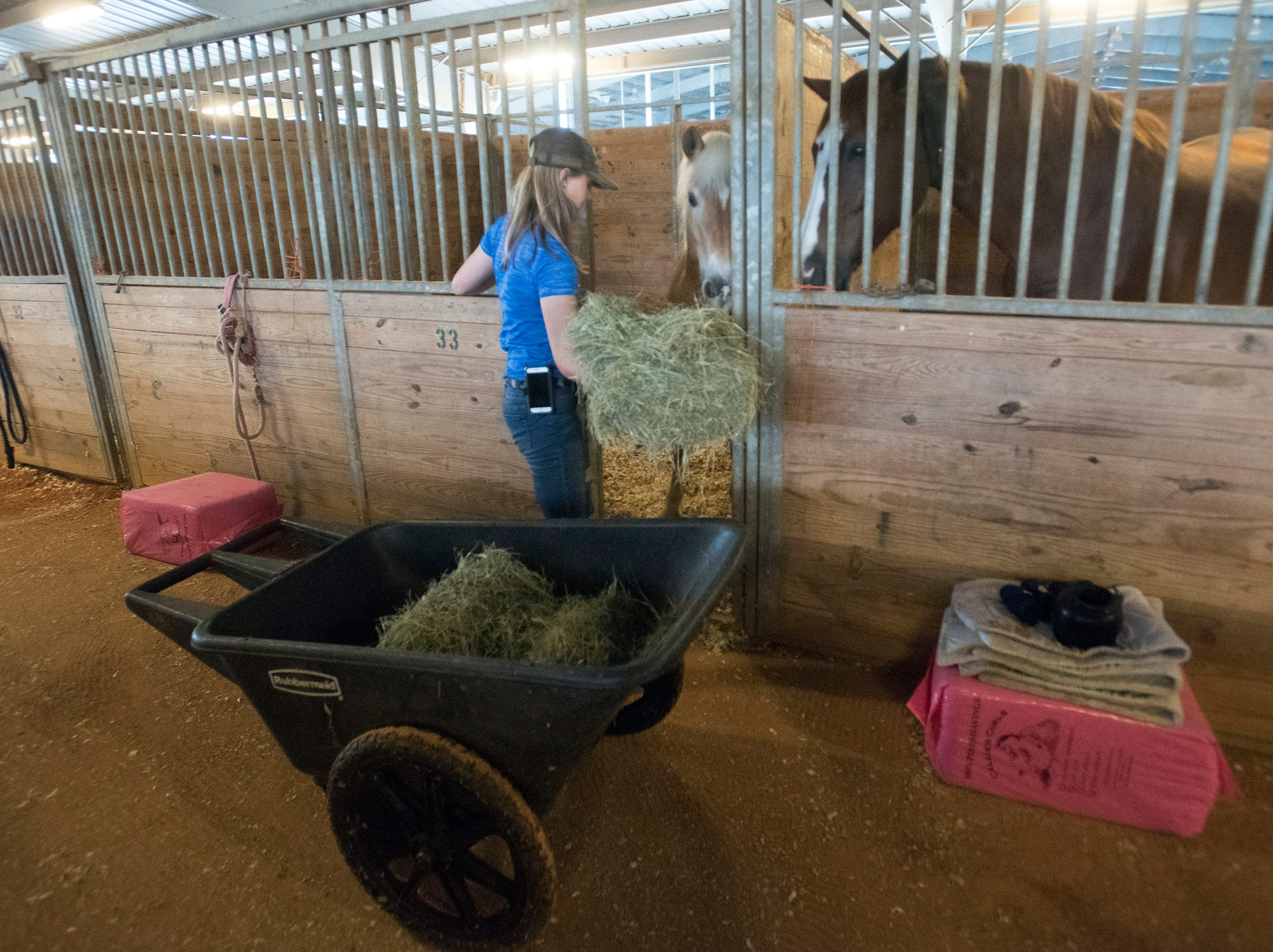Caelyn Grodoski of Destin feeds the horses stabled at the Escambia County Equestrian Center on Wednesday, Oct. 10, 2018, as Hurricane Michael approaches the Panhandle.