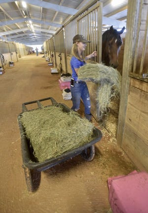 Escambia County Equestrian Center offers shelter to horses and their owners.